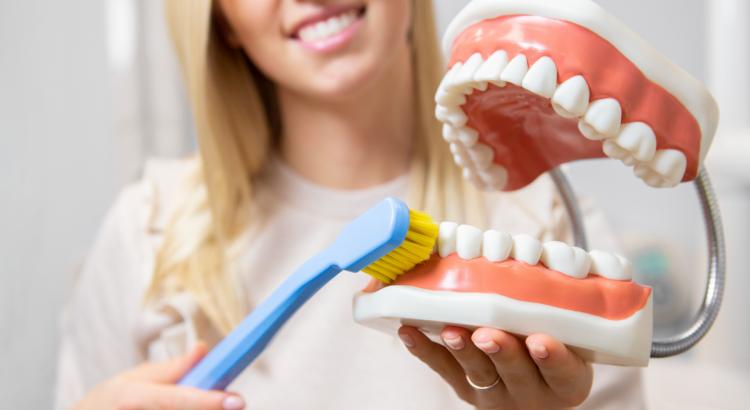 zobārste rāda kā pareizi tīrīt zobus